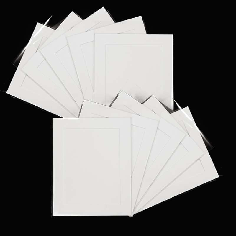 Pack of 10 White Picture Mounts, Backing and Bags